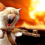Η γάτα που γαβγιζει