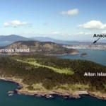 paul-allen-island-5