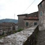 Vitiana - Tuscany