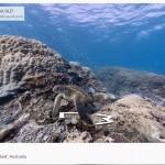 google maps ocean