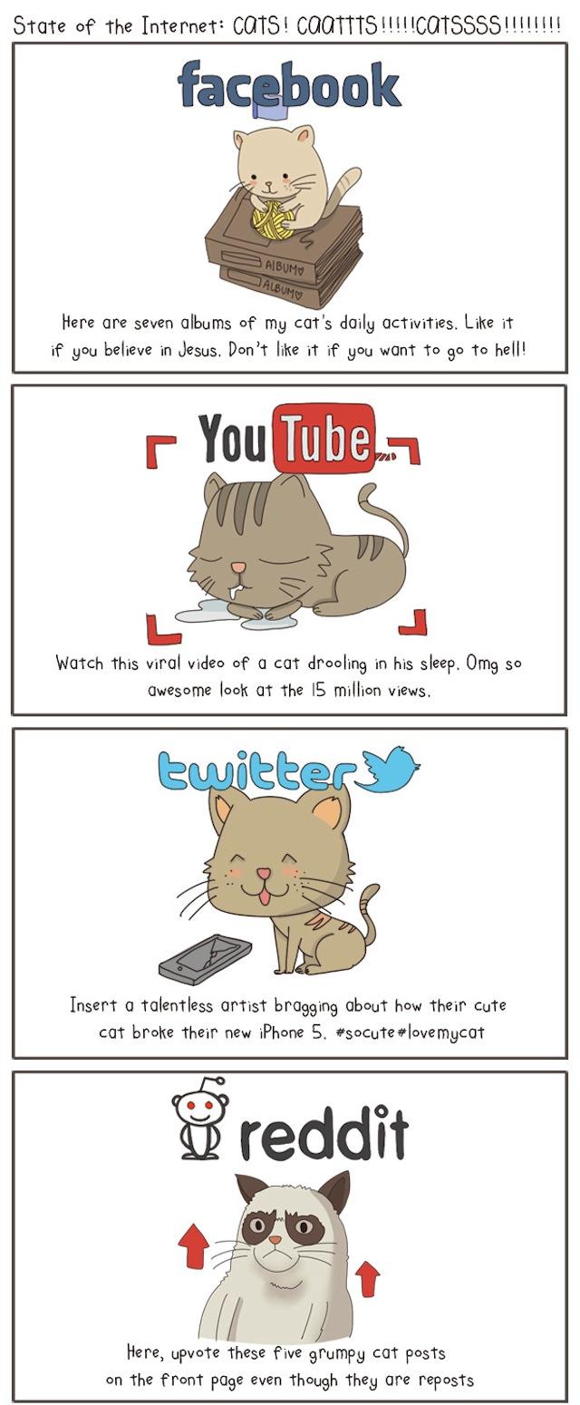 internetcat1