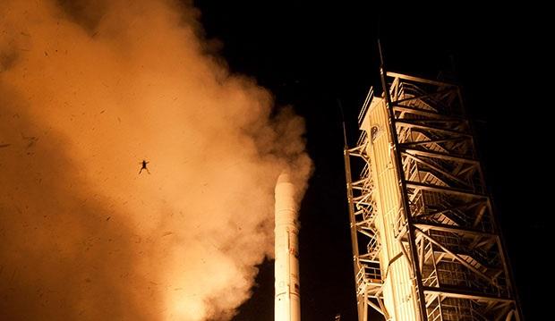NASA frog photobomb