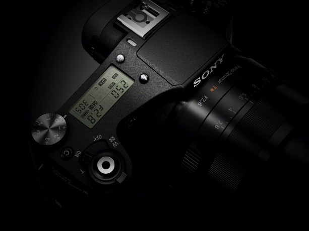 RX10_palen02-1200 (Custom)