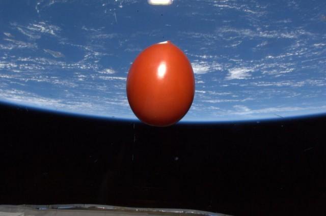 space_tomato