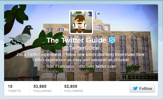 the twitter guide