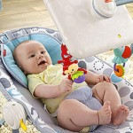 Fisher-Price_newborn-to-toddler-apptivity-seat-crop