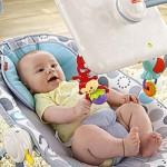 Fisher-Price_newborn-to-toddler-apptivity-seat-crop
