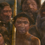 Oldest ever human DNA