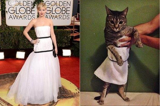 jennifer-lawrence-cat-dress-2
