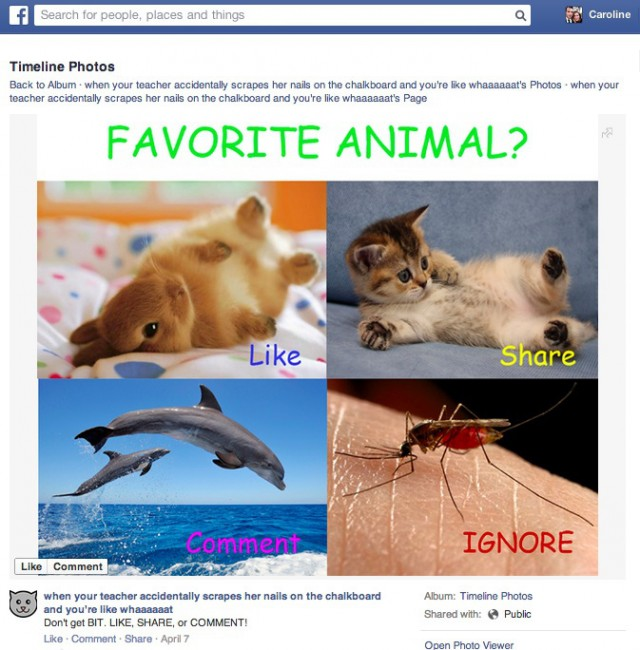 facebook fights spam content