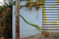 street-graffiti-16