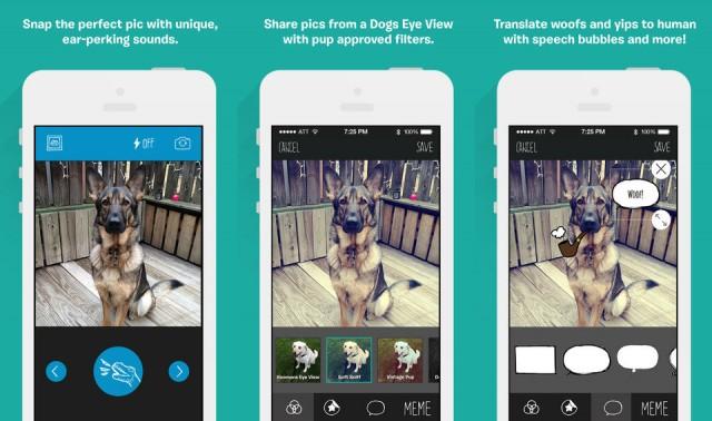 BarkCam for iOS