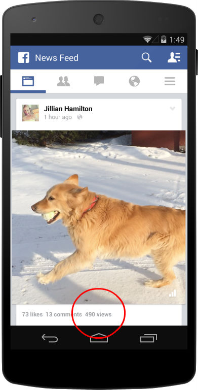 Facebook public video views