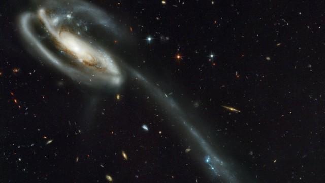 Tadpole Galaxy 2002