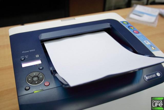 Xerox Phaser 6022 (10)