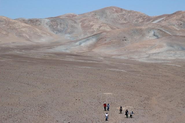 Pampas de La Joya desert Peru