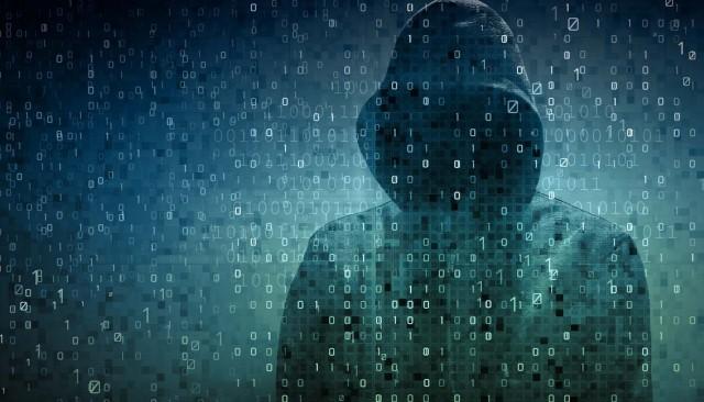 hoodie_data