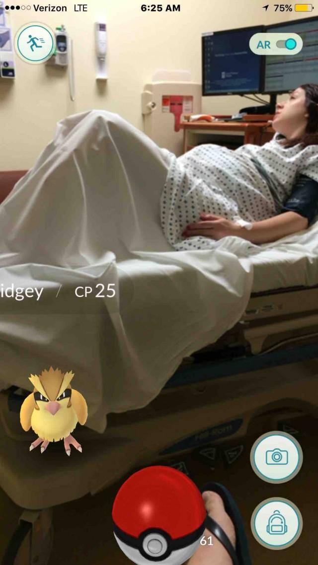 Pokemon GO Gennisei