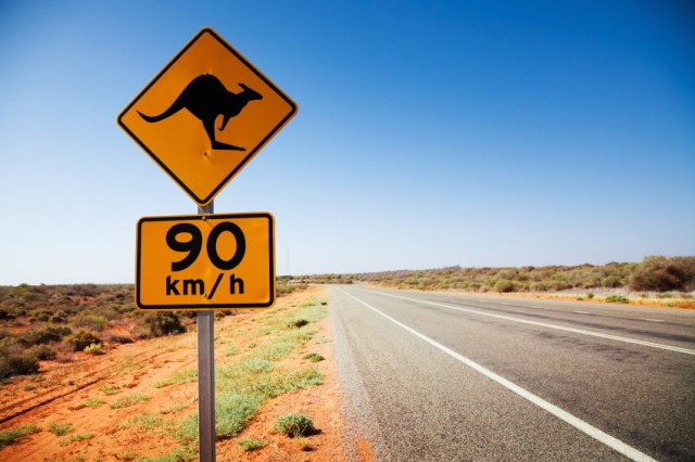 kangaroo_sign