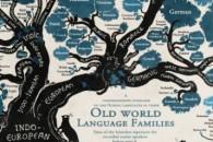 n-LANGUAGE-TREE-INFOGRAPHIC-large570