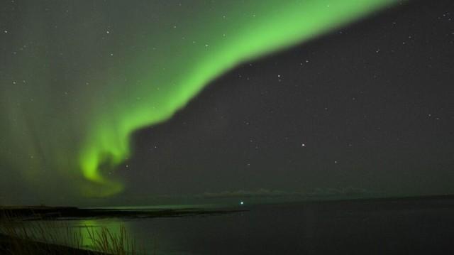 151202115552-reykjaviksk-exlarge-169