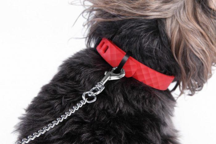 Kyon. Αυτό είναι το έξυπνο κολάρο που παρακολουθεί αλλά και μπορεί να ηρεμήσει το σκύλο σας