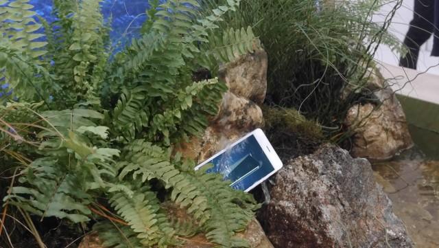 Hisense Rock (2)