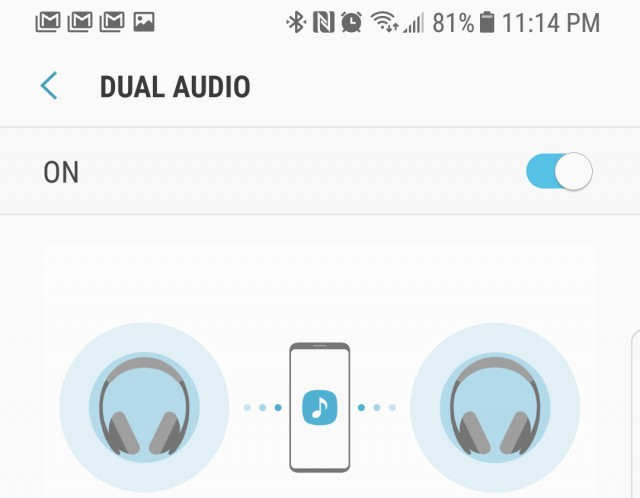 gs8-tips-dual-audio-100720135-orig