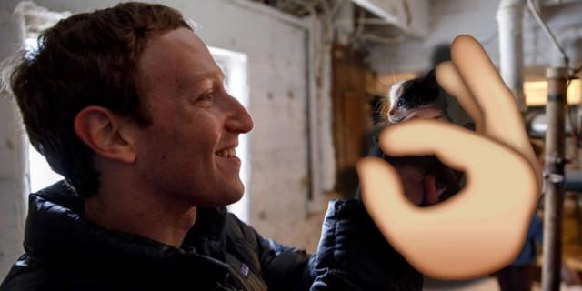 Facebook-Pinch-fixed