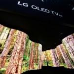 LG OLED Canyon_2