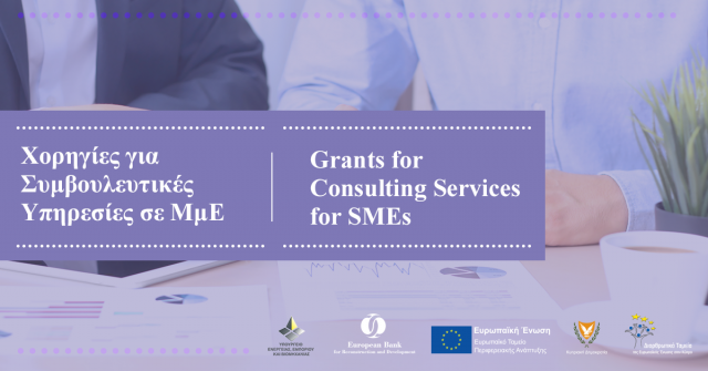 GRANTS FOR CONSULTING SERVICES FOR SMEs