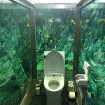 Aquarium-toilet