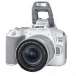 Canon EOS 250D-03