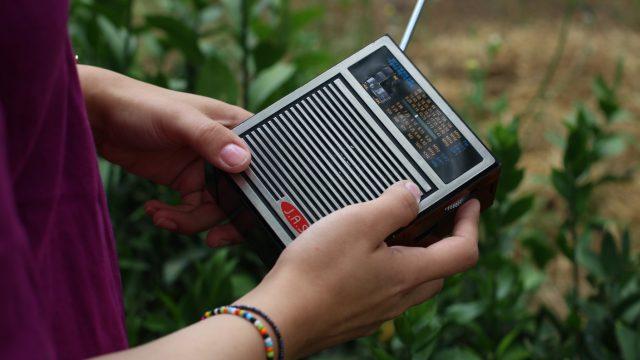 RADIO GARDEN 2