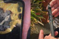 Στα δικαστήρια η Apple με Αυστραλό χρήστη που τo iPhone X του, εξερράγη στη… τσέπη του!